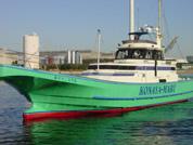 大型ワイド船